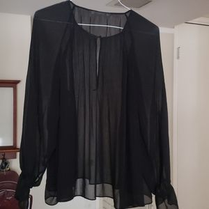 Zara Pleated Blach Sheer Blouse